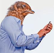 Как повысить эффективность от публикаций в Твиттере